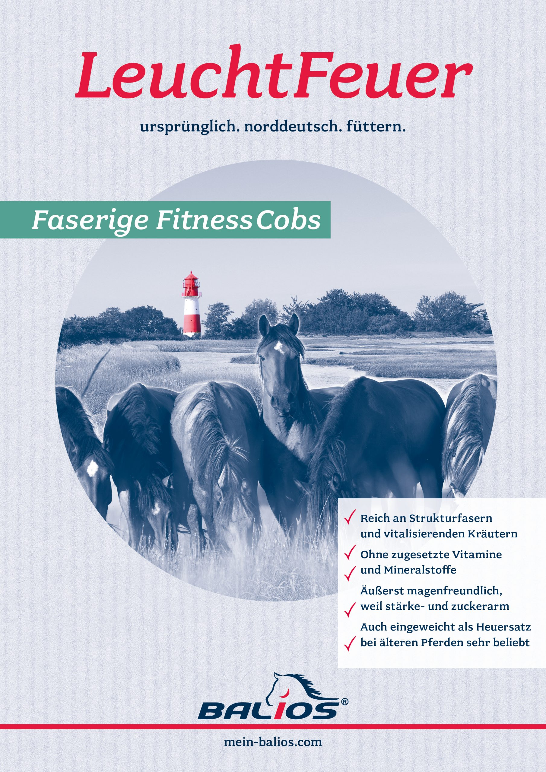 BALIOS LeuchtFeuer Faserige FitnessCobs